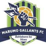 Marumo Gallants suspend three players
